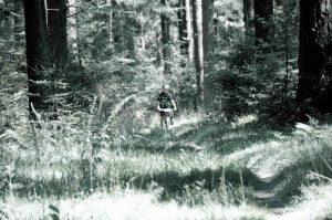 Butgenbach Dante 2012 (1 of 164)